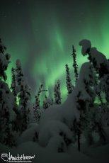 December 5th : Burst of Aurora in a winter wonderland