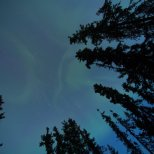 August 15th : First aurora of the year!