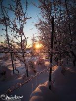 November 17th : Sunset