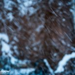 November 22nd : Snow day abstract