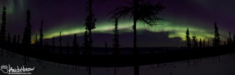 February 8th : Aurora borealis panorama. Taken 02/07 at 10:30 PM, however, since the aurora extended past midnight I'm counting it for the 8th