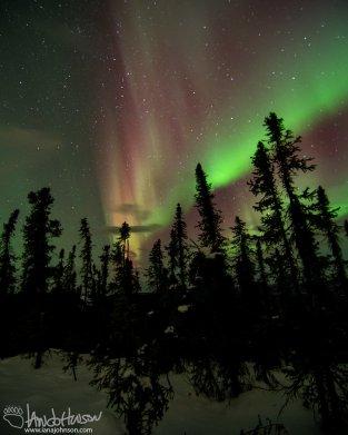 """""""Blended Aurora"""""""