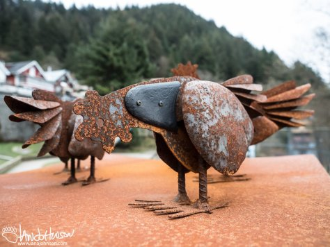 These iron chickens caught my eye as I walked through the streets of Juneau.
