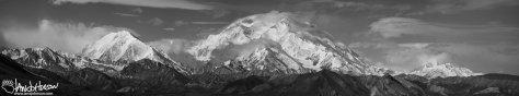 Denali National Park, Black and White