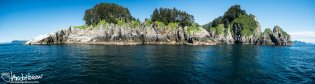 This panoramic shot really captures the setting of the Chiswell Islands. Characteristic of the islands, bright green tops and trees were seperated from the water by a gray band of rock.
