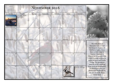 2016 Calendar Final 9halfx1323