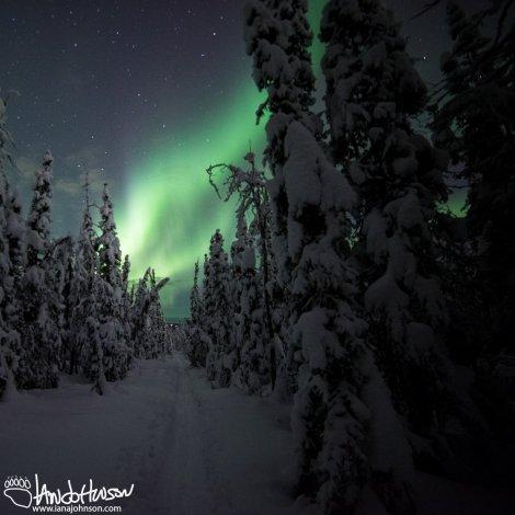Ski Trail Aurora