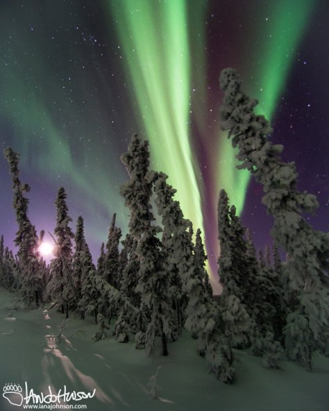 Aurora and a moonset, Fairbanks, Alaska