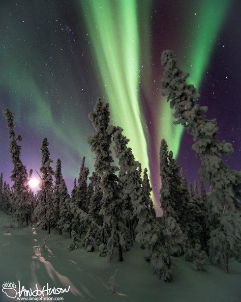 Aurora and a moonset, Fairbanks, Alaska