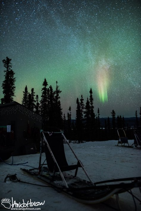 A bright section of aurora hightlights a beautiful scene capturing the Milky Way over the sleds at Blackspruce Dogsledding