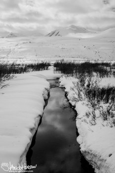 Goat Creek has managed to melt through the snow in Haines Pass.