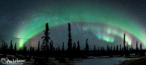 A large panorama showing off the Galaxy and the Aurora Borealis over Black Spruce Dogsledding.