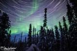 Aurora Star Trails Purple
