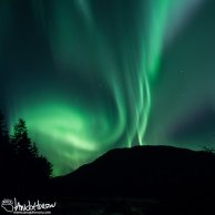 Aurora Borealis, Juneau, Alaska