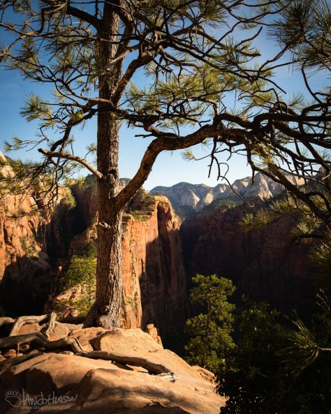Angels Landing, Zion National Park, Utah, Landscape, Photography