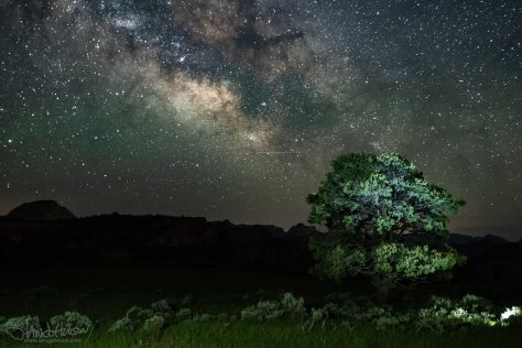 Zion National Park, Milky Way, Stars, Photography