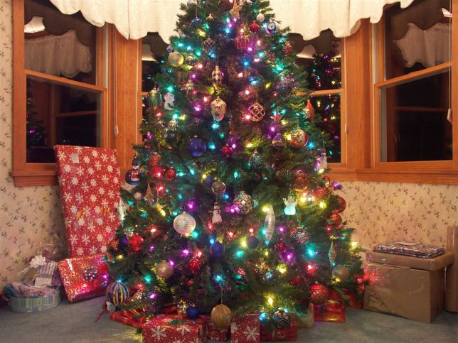Christmas tree, 2005