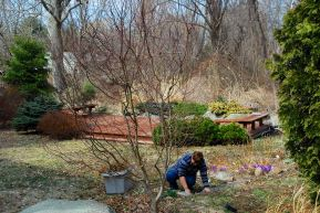 march-28-gardening