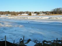 december-22-ice-gulls