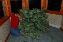 december-8-building-the-christmas-tree
