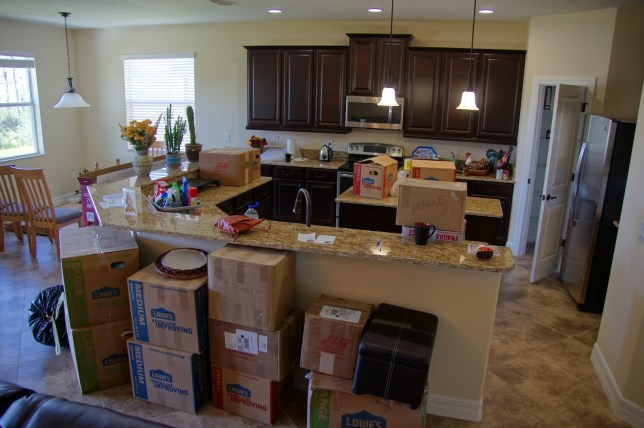Lots of stuff to put away in the kitchen