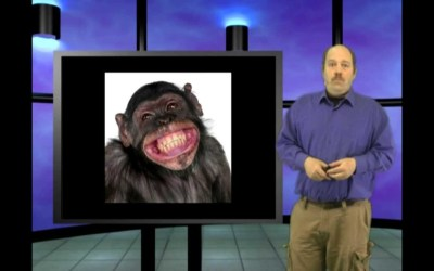 Walk like an ape? Genesis Week, episode 34, season 2 with Wazooloo/Ian Juby