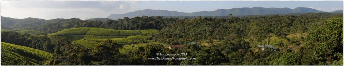 View north and east from the Rainforest Ecolodge. The high ridge has notable peaks on it with Suriyakanada's towers  being at the far right.