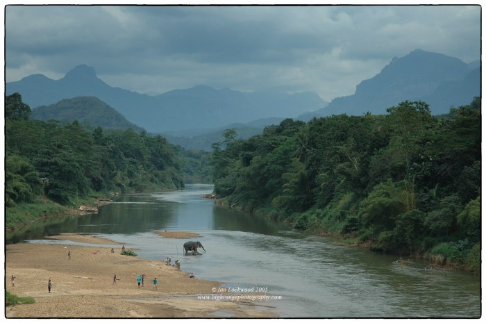 Kelani River looking east at the bridge.