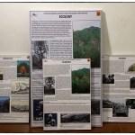 DC_Exhibition_Color_Panels_6(07_18)