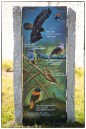 Birds of the Palanis on granite slab- a part of KIS's soon-to-be opened environmental education center at Swedish Hill.
