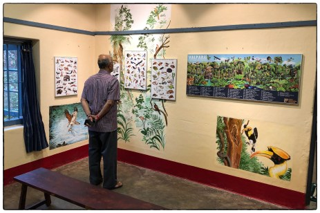 A distinguished guest (Sridhar's father) views posters by Rohan Chakravarty and others depicting the birds of the Anamalais.