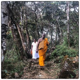 We met a senior monk and pilgrims on the forested path leading to Sri Pada. (January 2020)