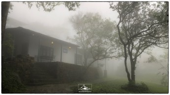 Sir John's Bungalow in monsoon conditions. While the rest of the island was experiencing dry winter weather, the Knuckles was still in the throes of the North East monsoon during our visit in late January. Not great for birds and landscapes but ideal conditions for amphibians and snakes!