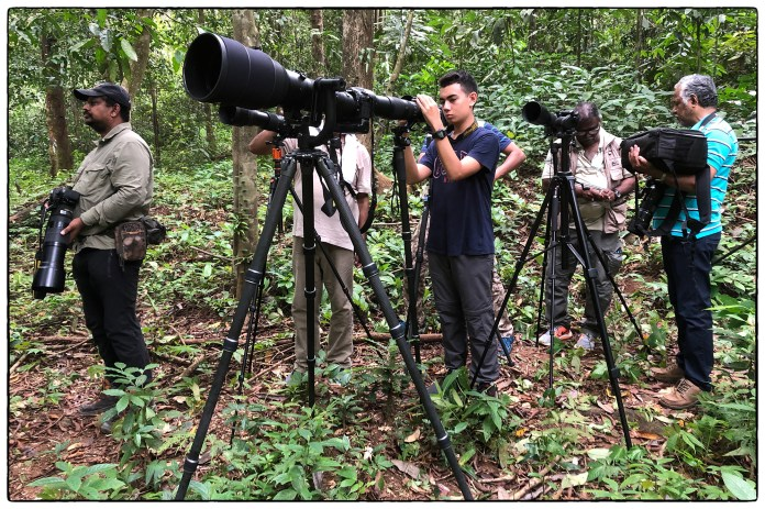 Lenny setting up his gear in Thattekad's primary forest along with members of the Madras Photographic Society. Their leader is Saravanan Janakarajan seen on the far left.