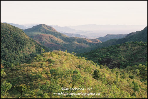 Looking north east near the Sengeltheri Resthouse. The image shows the direr, leeward side of the southern Western Ghats. (June 1997)