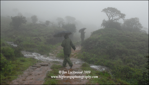 Bob and Tanya negotiating a flooded road in the grasslands of Mukkurthy National Park in the Nilgiri Hills