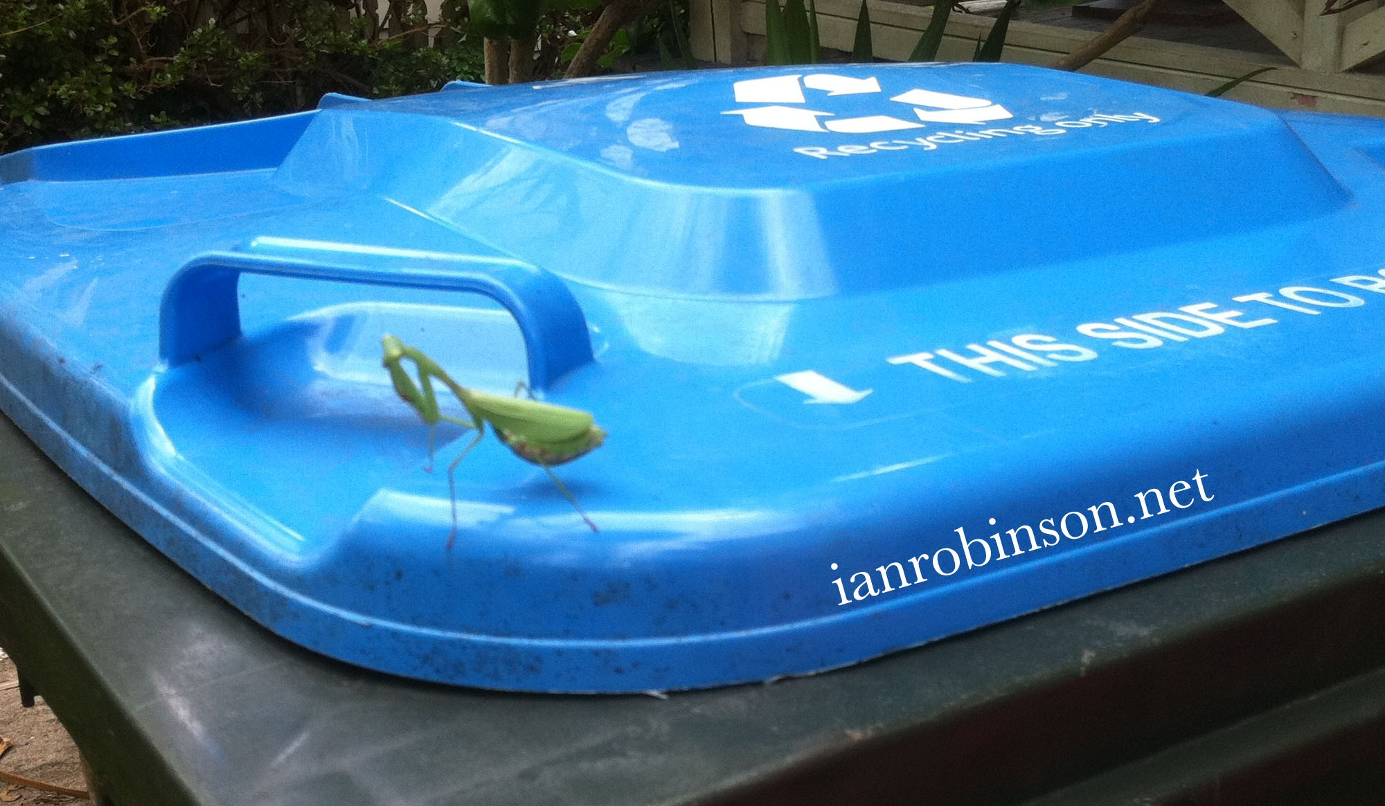Grasshopper on Recycling