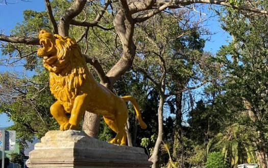 leones de el llano parque oaxaca
