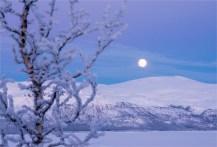 bjorkliden-moonrise-2017-swe009-17x25