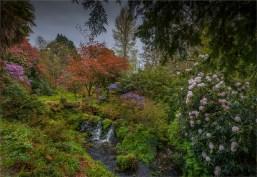 Mintern-Gardens-2017-ENG092-18x26