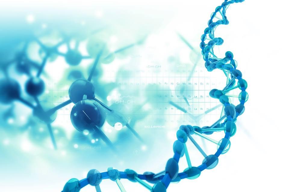 Desarrollo de la terapia de edición del genoma CRISPR-Cas9 personalizada para la enfermedad de Pompe