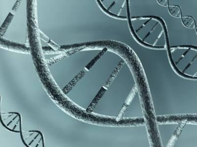 El género importa para el desarrollo de la lesión de la materia blanca en pacientes con enfermedad de Fabry