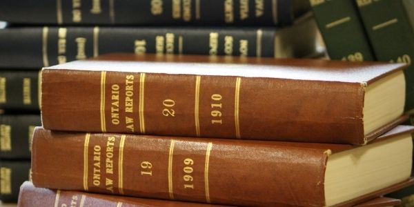 Get the details of the importance of directive principles of state policy in Indian constitution