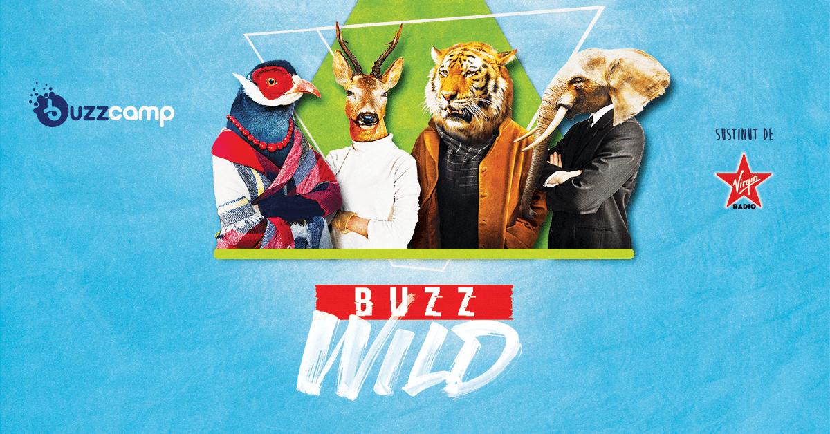 BUZZCamp revine în orașul tău cu multe oportunități. Vii si tu?