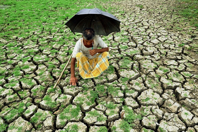 A farmer at a dry paddy field