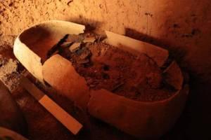 Harappan discovery in kerala