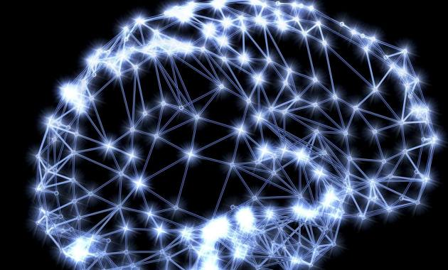 brain cerveau neurone