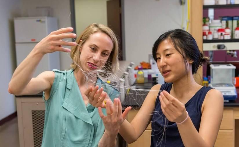 Un nouveau dispositif implantable pourrait redonner le mouvement aux personnes paralysées