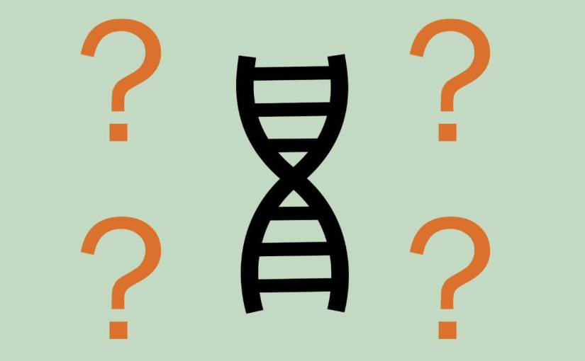 Les résultats CRISPR contestés sur la modification des embryons humains