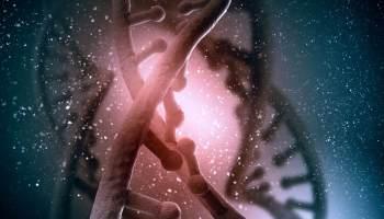 génomes adn